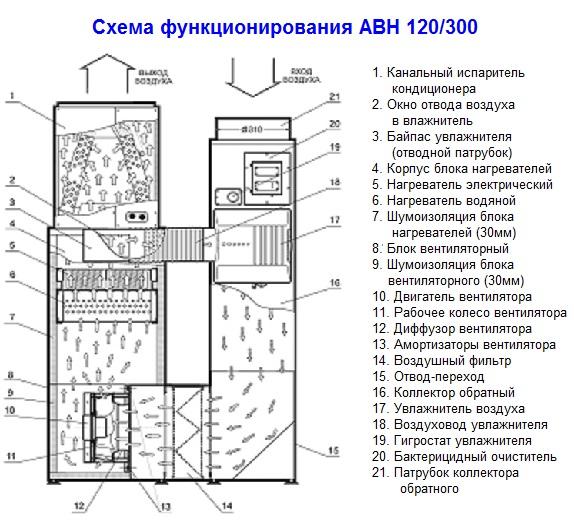Схема функционирования АВН